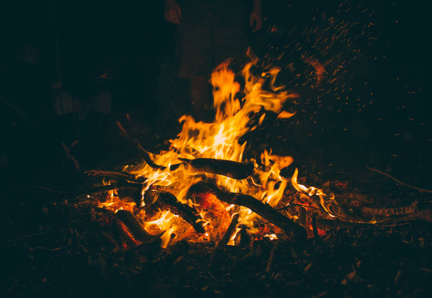 Advice For Pet Owners On Bonfire Night Sykes Holiday