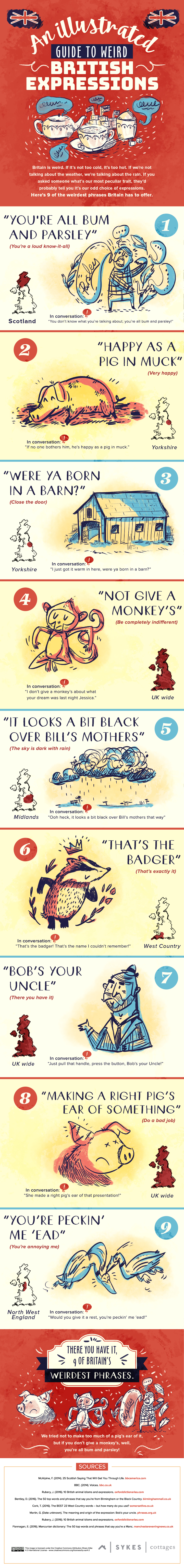 Illustrated Guide To Weird British Expression