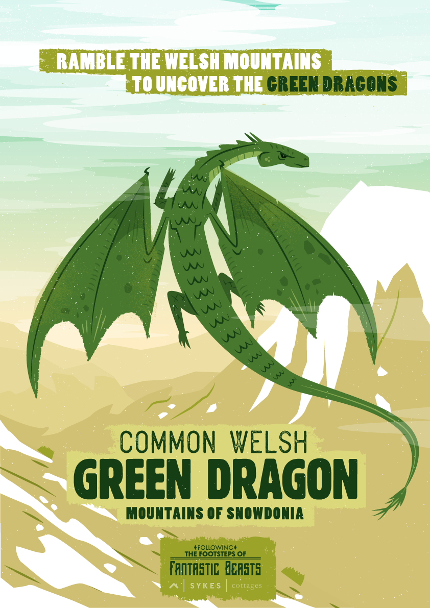greendragon poster fantastic beasts