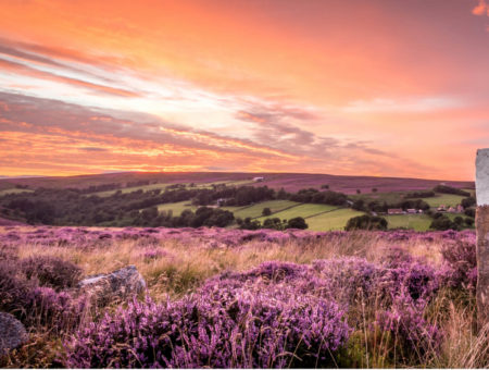 feature image yorkshire snap and win (2)