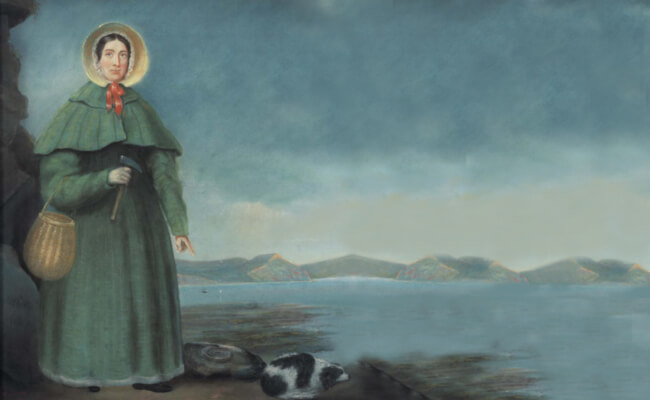 What is Devon Famous For - mary anning - first fossil shop - jurrasic coast fossils