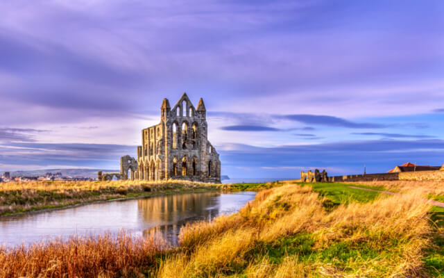 Dog-Friendly Walks Around Whitby - Whitby Abbey and the coast
