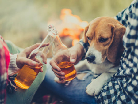 Pubs that allow dogs in the Peak District and Derbyshire