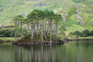 Dumbledore's Grave Loch Eilt