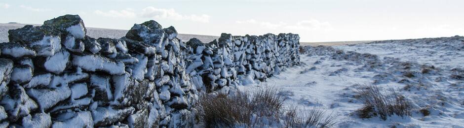 Devon Snow