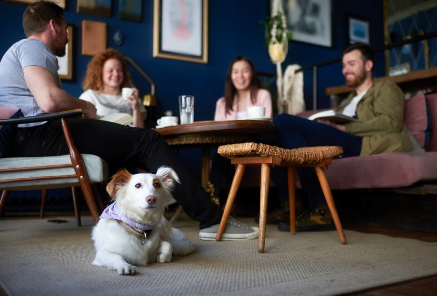 7 Dog-friendly Pubs in Keswick - Sykes Holiday Cottages