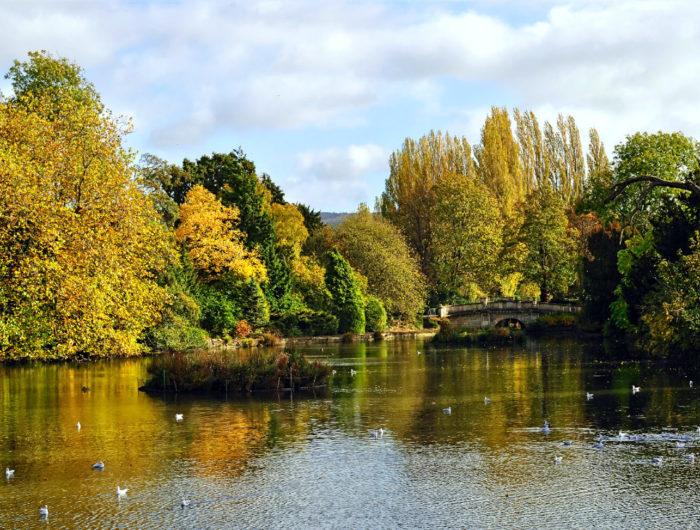 Pitvile, Cheltenham