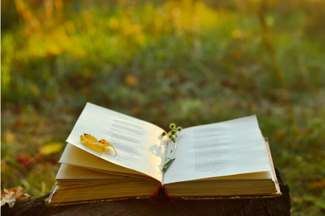 A book with flowers between the pages