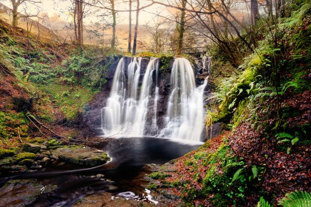 Glenariff Forest Park trail