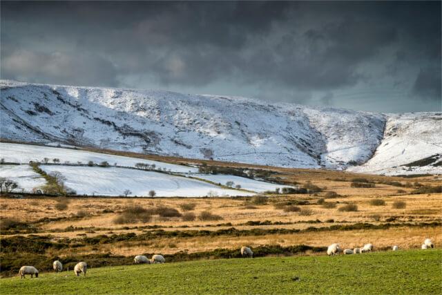 Snowy hillside in Pembrokeshire