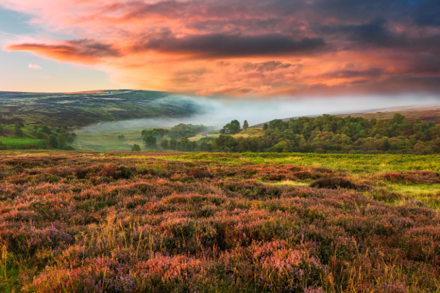 North York Moors, Yorkshire