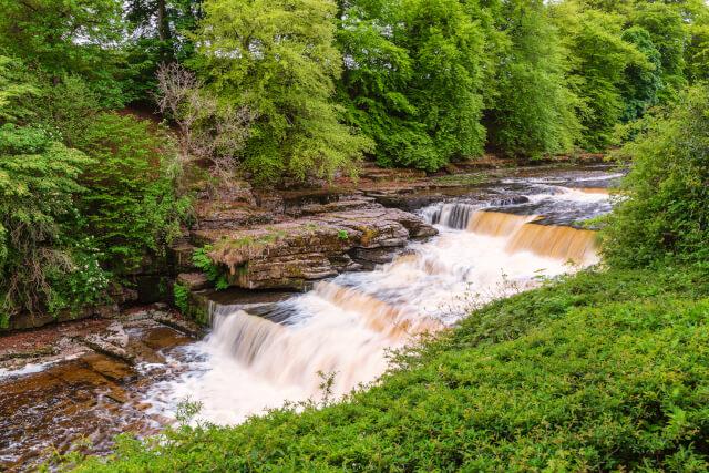 Aysgarth Lower Waterfall