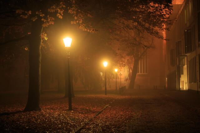 A dark evening during autumn UK
