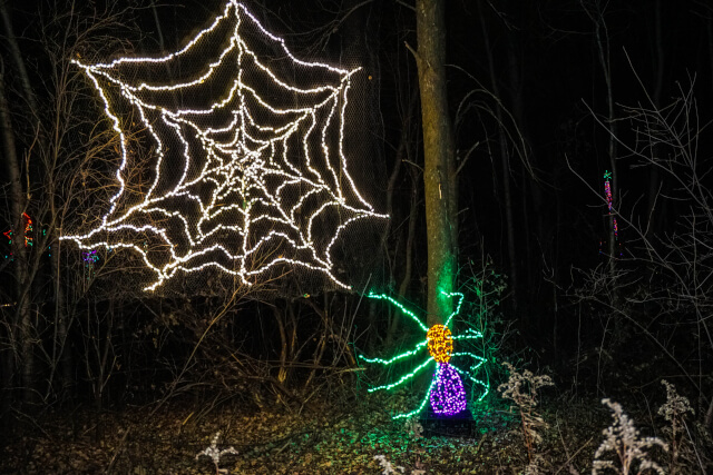 Spider web christmas decoration
