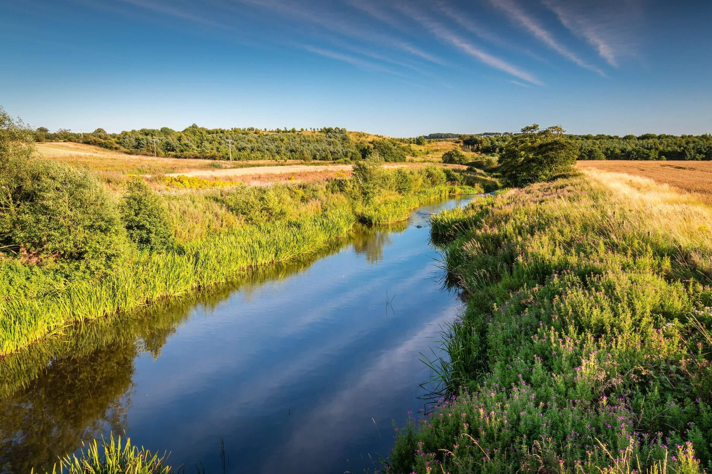 River Aln in Alnmouth