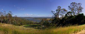 Tamar Valley Countryside Devon
