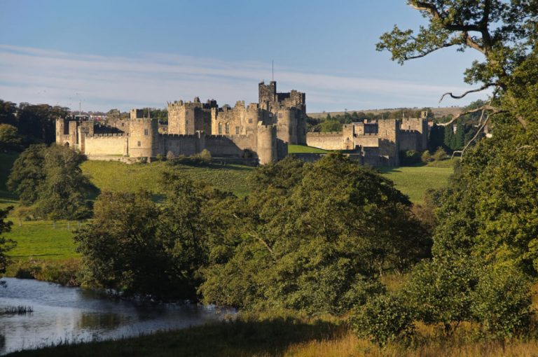 alnwick castle forest northumberland