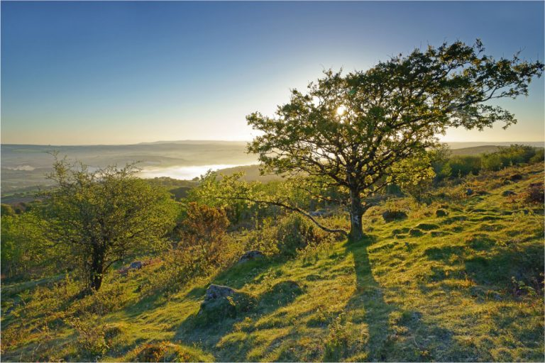 kit hill callington tamar valley