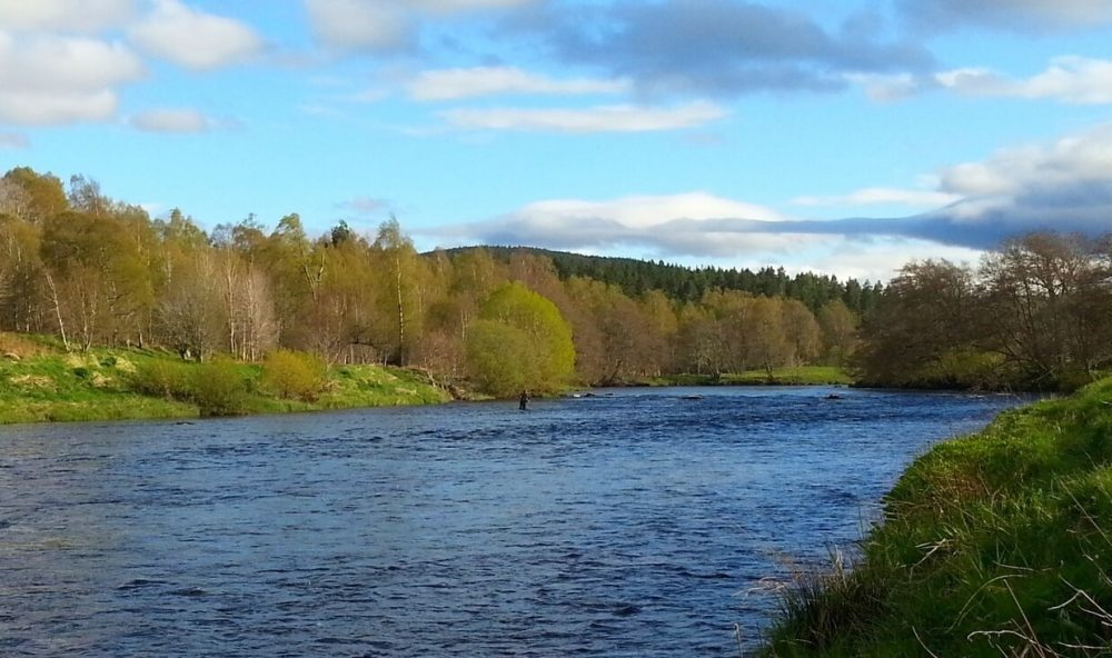 Trout Salmon Fishing in Scotland