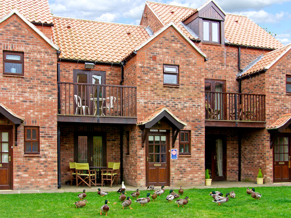 Herons Reach Pet-Friendly Cottage, Whitby, North York Moors & Coast (Ref 3627)