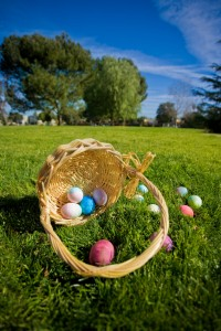 Enjoy an Easter Egg Hunt with the family this Easter weekend!