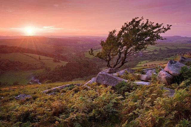 Dartmoor- Via Flickr