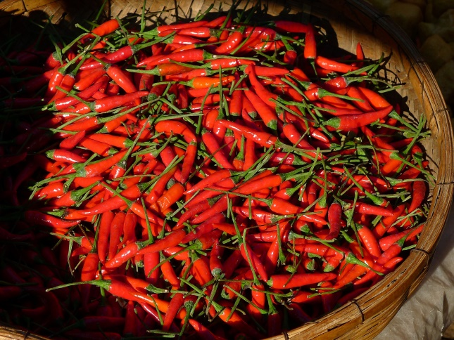 Chillis at a food festival