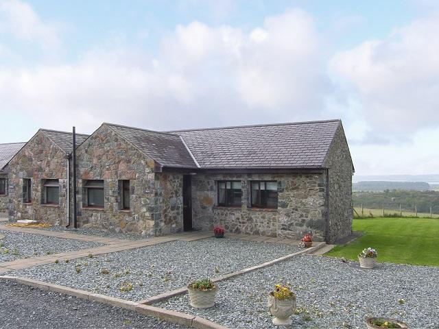 Wren   Llangaffo, Wales   Ref. 905023