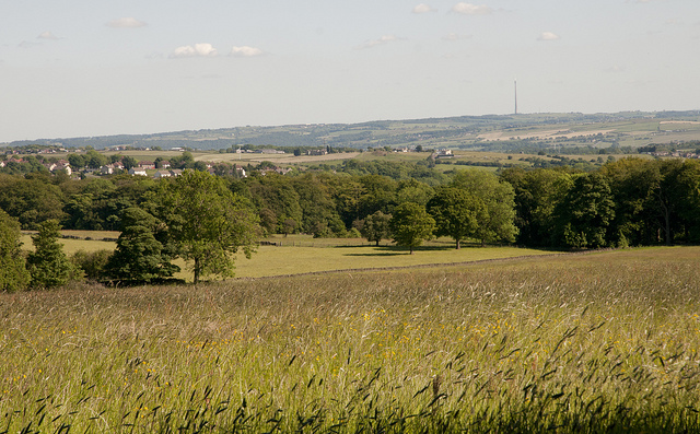 Emley Moor view   by Jeff Holt   CC 2.0