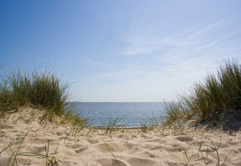 beach-istock-9373705-1