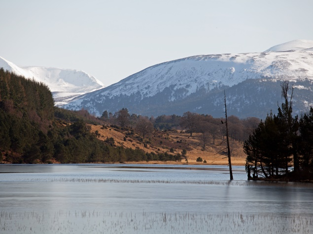 Winter in Aviemore