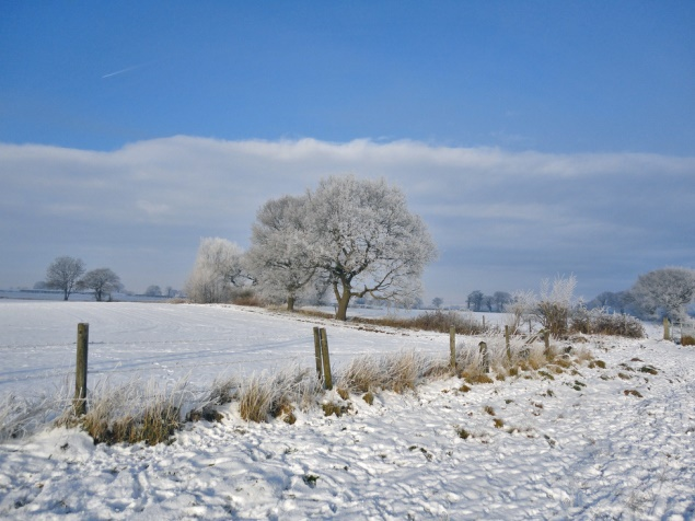 Winter in Cheshire