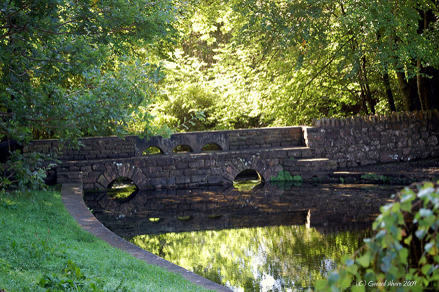 Grassy bank with over hanging trees, stone bridge over a reflective pond