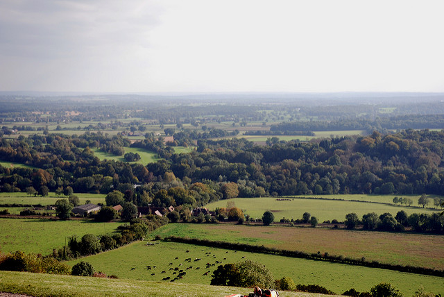 View over the Surrey hills; open countryside.