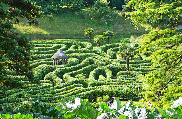 The Maze at Glendurgan by Tim Green is licensed under CC BY 2.0