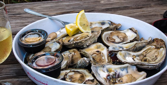 A plate of oysters from Oyster Gathering Festival