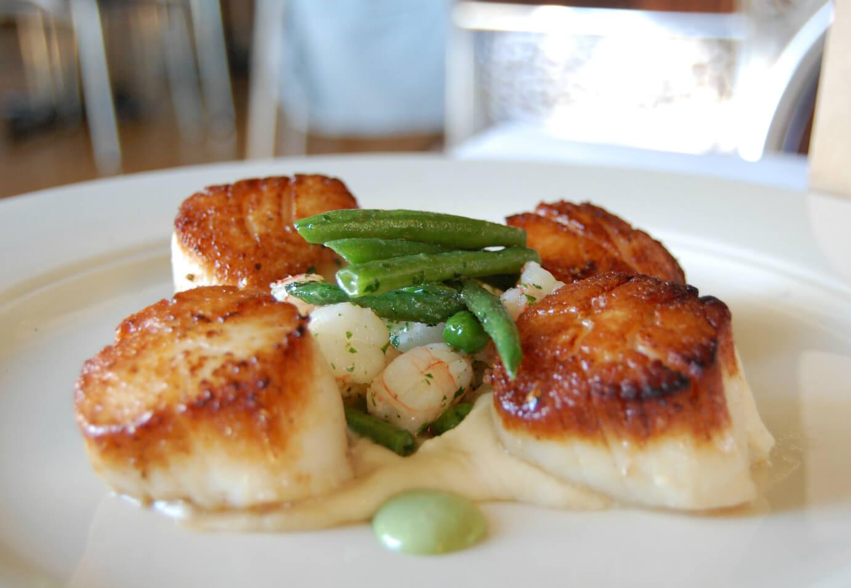 scallops-food-1