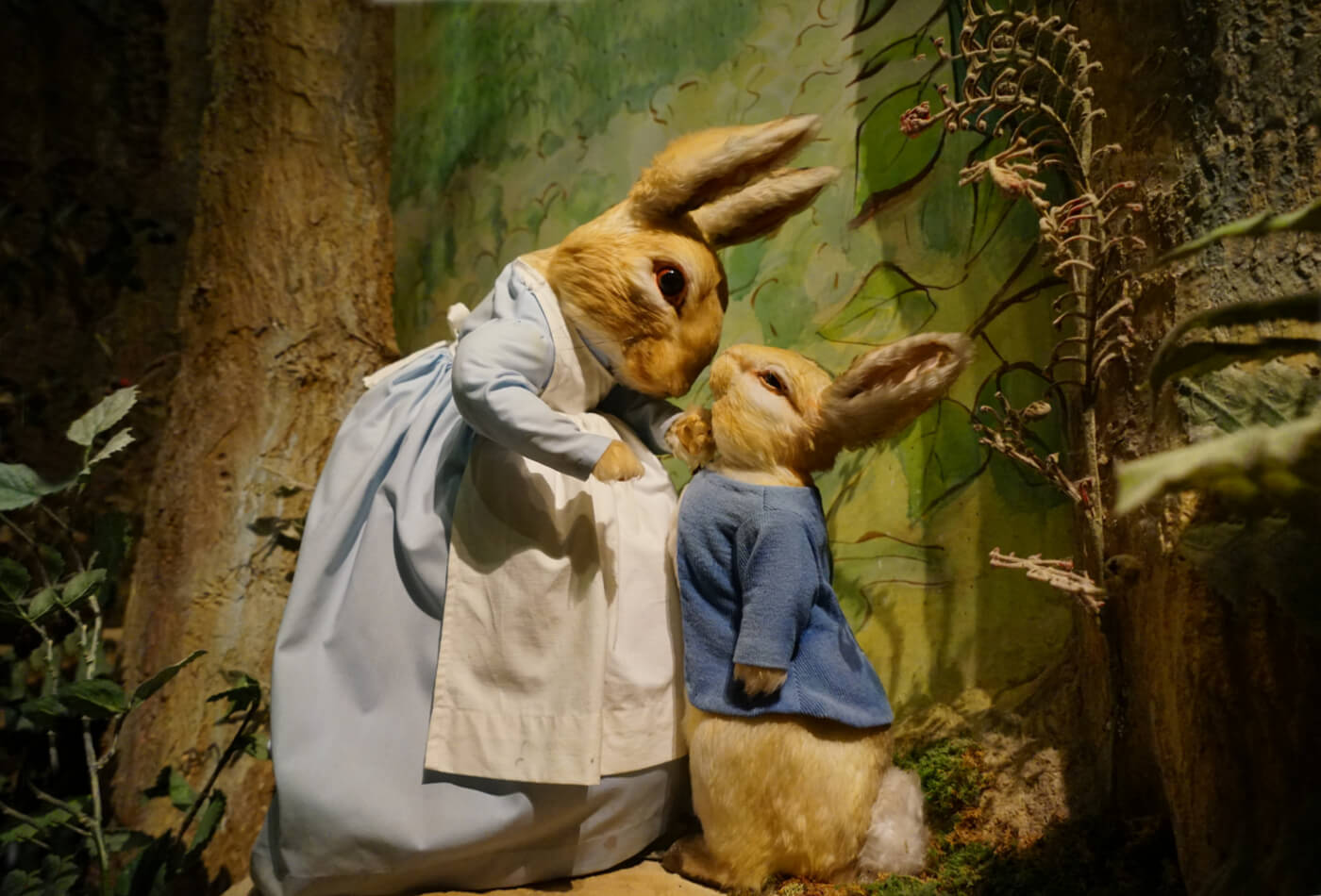 beatrix potter days out
